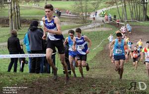 Saison de cross 2018 - 2019